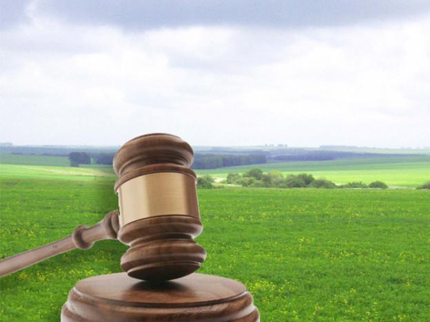 Маневичанам розповіли, як захистити права власності на землю