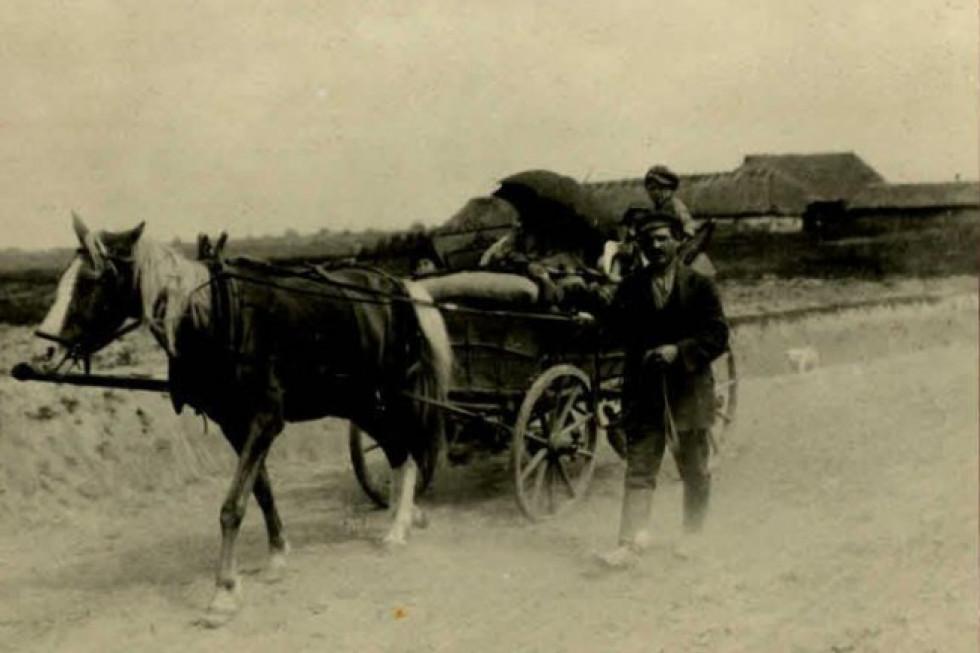 Типовий транспорт на дорогах Волині в 1916 році.