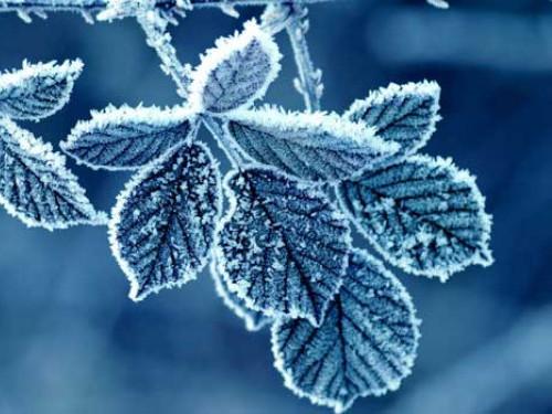 Погода в Турійську на 14 лютого
