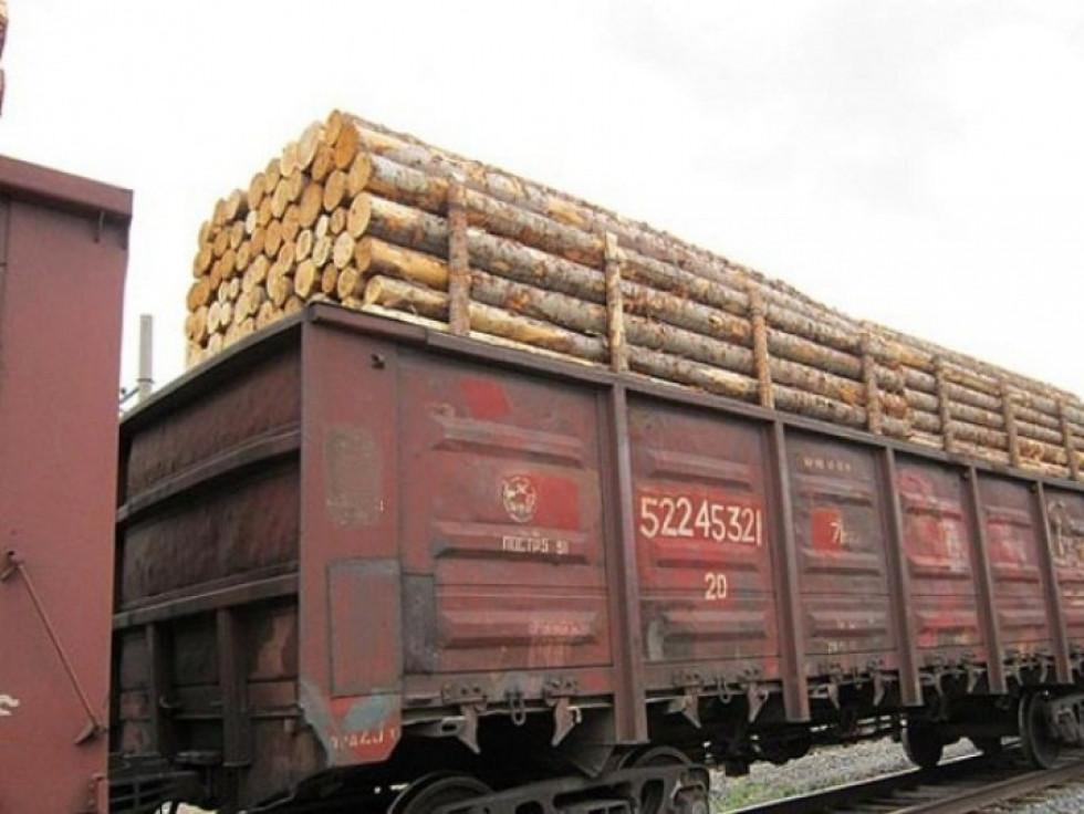 Скільки заробили в Турійському районі на експорті лісу