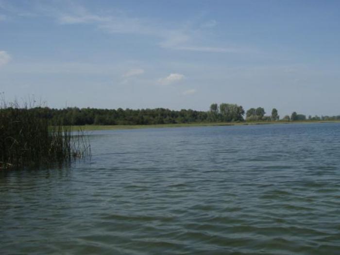 Перевірили якість води турійських озер