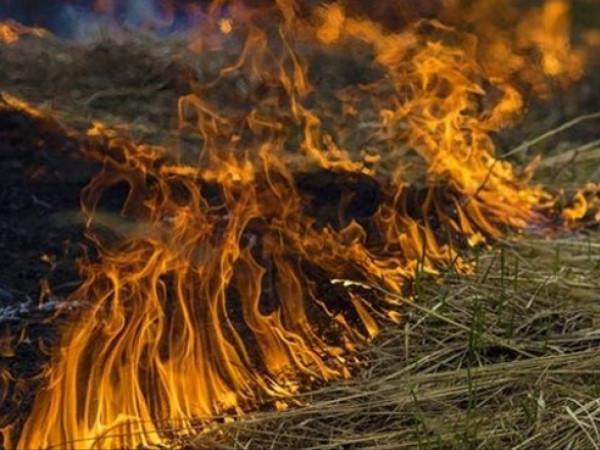 На Турійщині - високий рівень пожежної небезпеки