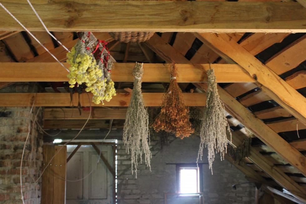 Під стелею висять букети з пахучої трави