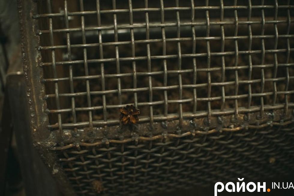 Шишки переробляють для власних потреб лісгоспу
